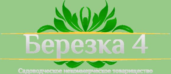 Берёзка-4