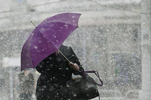 Погода ноябрь 2017 москва область