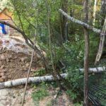Забор сломан соседским деревом